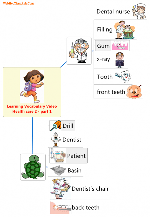 Learning Vocabulary Video: Health care 2