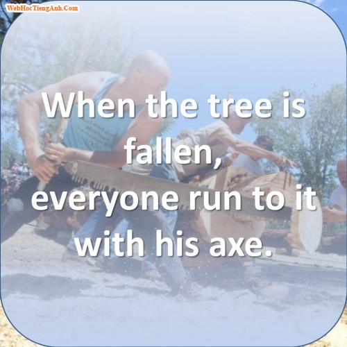 When the tree is fallen, everyone run to it with his axe.